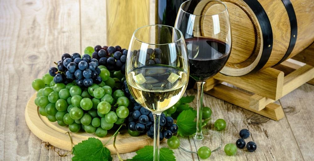 Orfila's Wonderful World of Wine Tasting